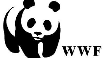 PARCO D'ABRUZZO: VIETATA LA CACCIA NELLE AREE LAZIALI DI PROTEZIONE ESTERNA SODDISFAZIONE DEL WWF