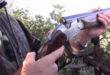 """Ferito davanti casa da un cacciatore, WWF: """"L'Abruzzo non può trasformarsi in un campo di battaglia """""""