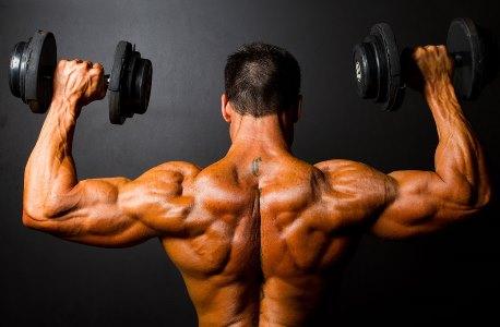 Il tuo workout per la massa muscolare