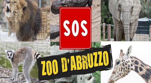 """LO ZOO D'ABRUZZO LANCIA IL SUO """"SOS"""", UN GRIDO D'AIUTO"""