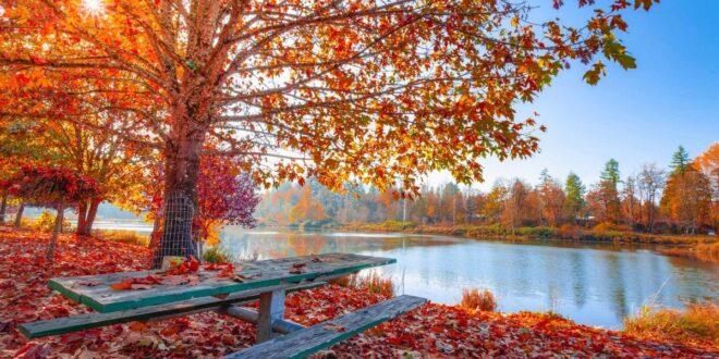 Escursioni di autunno: consigli per mete in Italia