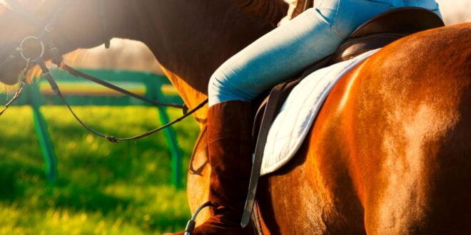 Abbigliamento ideale per fare Equitazione?